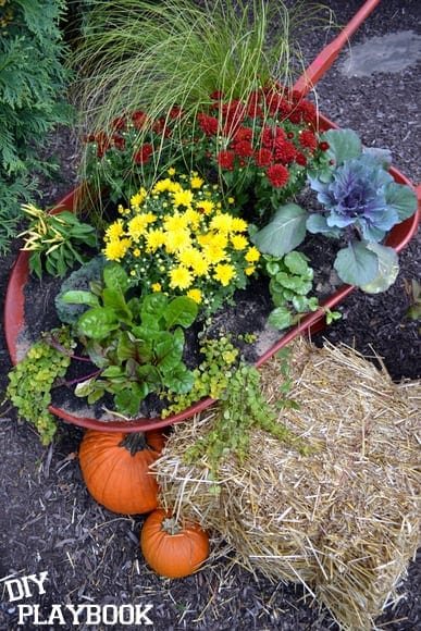 planter-wheelbarrow