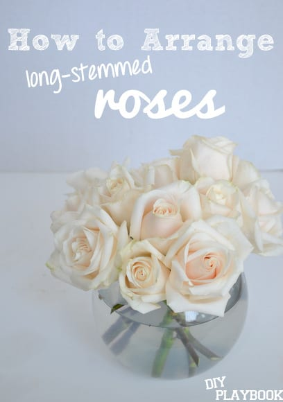 how to arrange long-stemmed roses