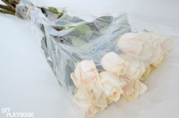 Long-stemmed white roses