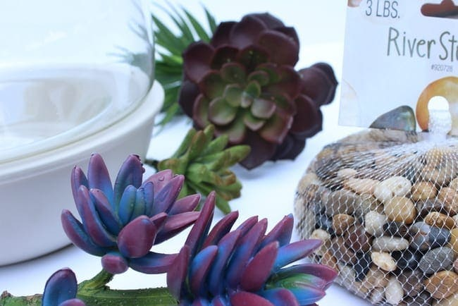 Faux succulents are surprisingly realistic and they look great in arrangements.
