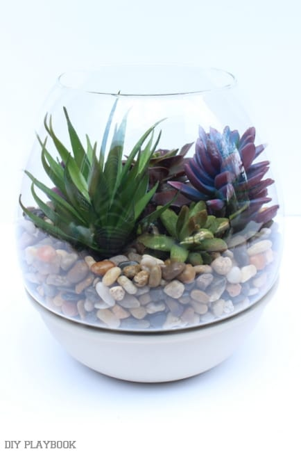 The succulents look great in a fishbowl-type planter.