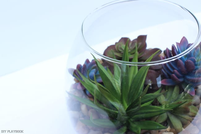 This cute succulent arrangement takes just 15-minutes to make and is low maintenance.