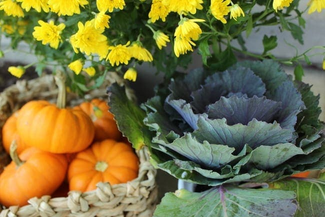 Fresh plants and pumpkins add a homey element to the house.