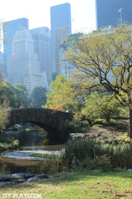 This view of Central Park is gorgeous.