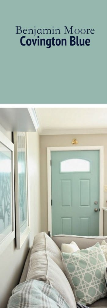 We chose this shade of blue for the door