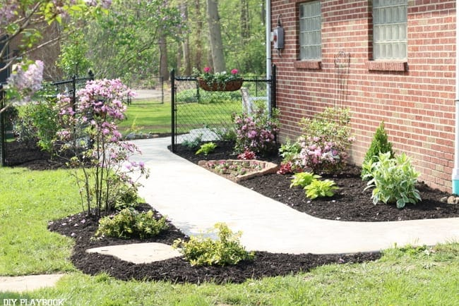 Lowe's patio makeover, the landscaping