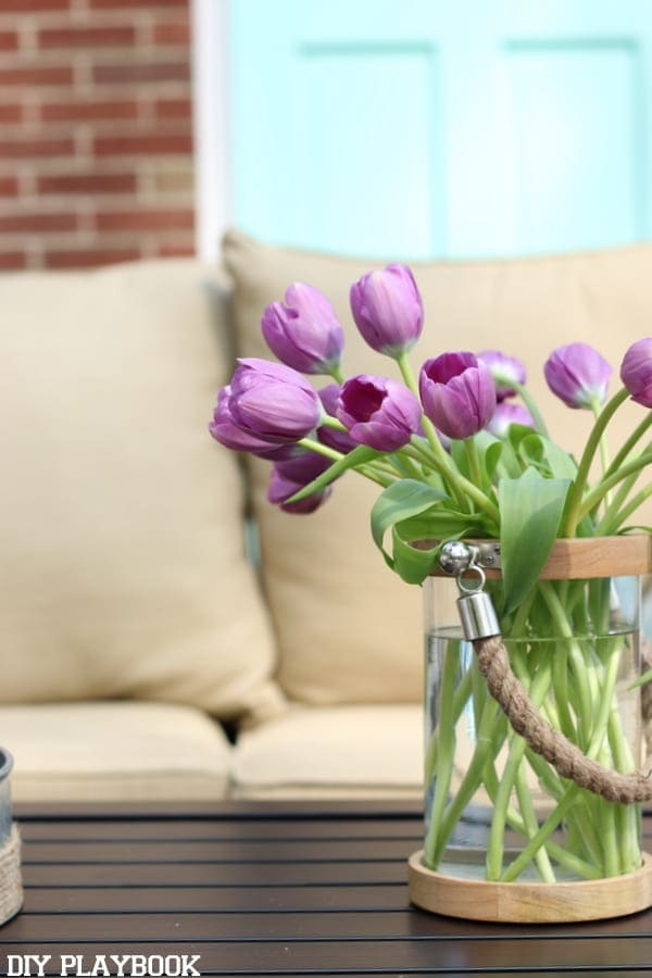 Patio Reveal tulip flower