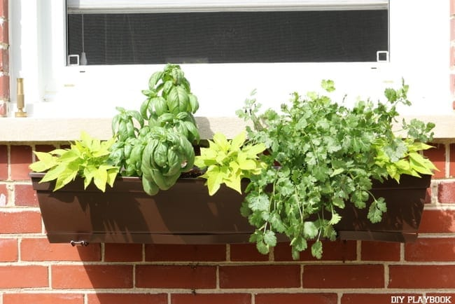These DIY flower boxes are also great for planting herbs.