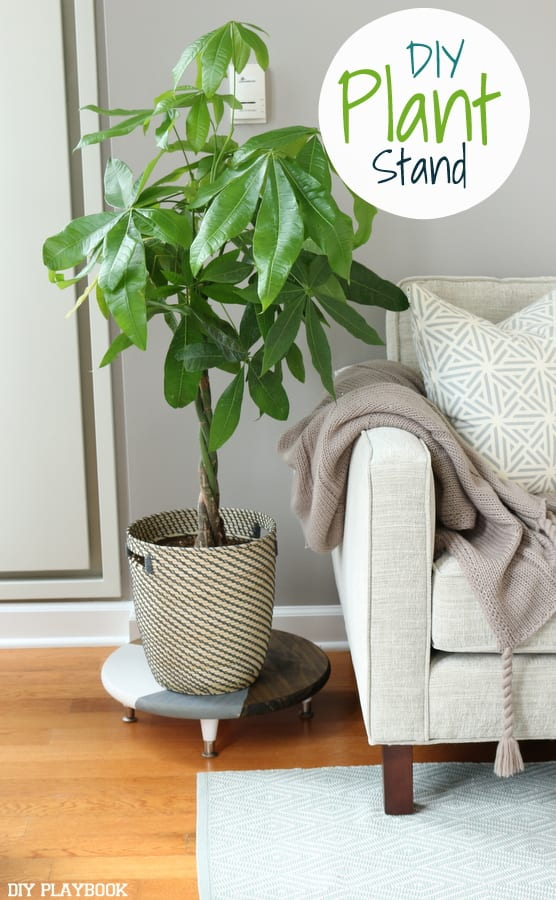 How to make an easy, chic DIY plant stand for your home.