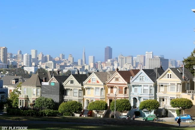 The painted ladies- where are the Tanners??