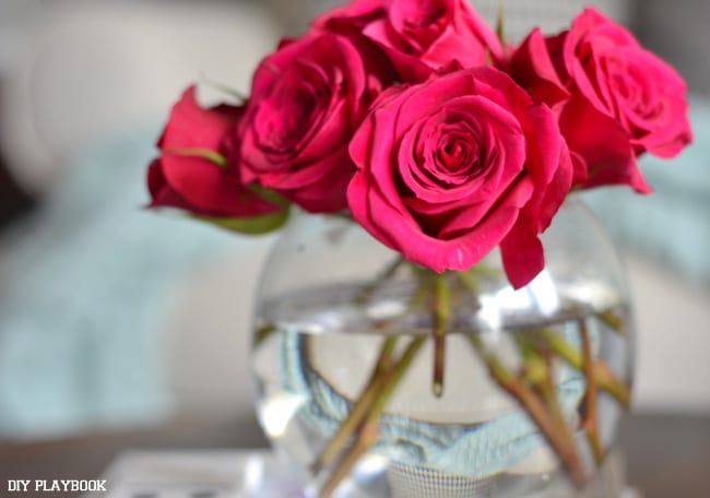 Pink-Roses-Fresh-Flowers