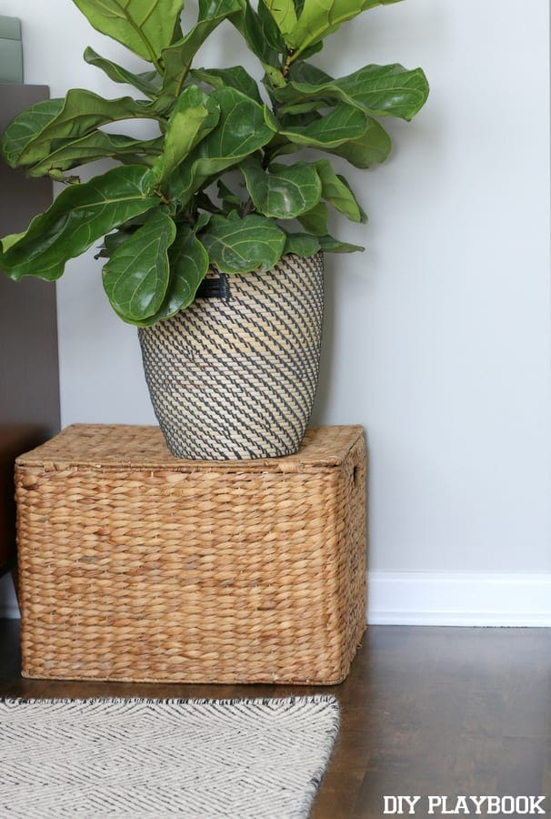 Planter basket with a wicker basket and an area rug