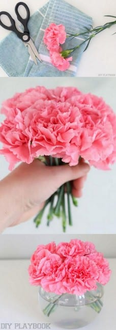 How to Decorate with Carnations: Tutorial | DIY Playbook