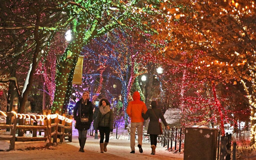The Christmas lights at the Lincoln Park Zoo light up the cold winter night.
