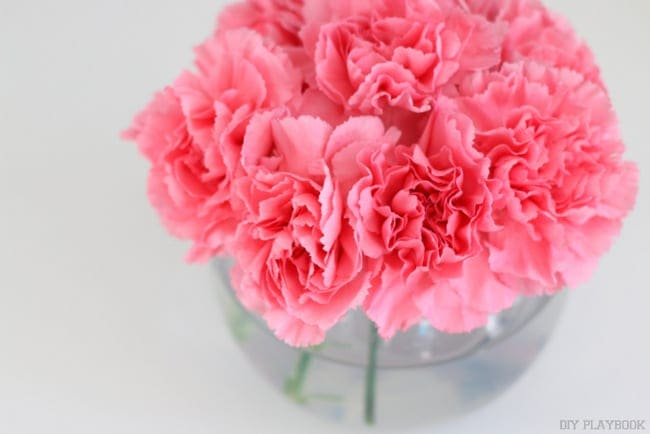 Make them look more full: How to Decorate with Carnations: Tutorial | DIY Playbook