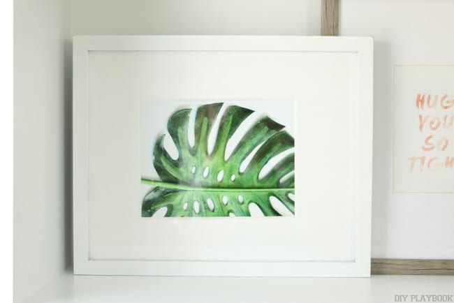 Free printables of succulents to frame for a gallery wall