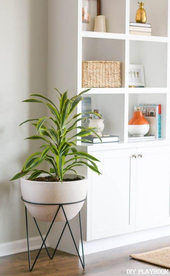 Planter-Gold-Frames-Spring-6