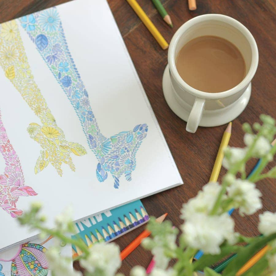 Adult coloring books sold at Michaels