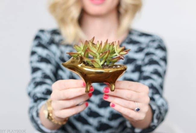 Succulents are so easy to plant, like this sweet little hedgehog planter.
