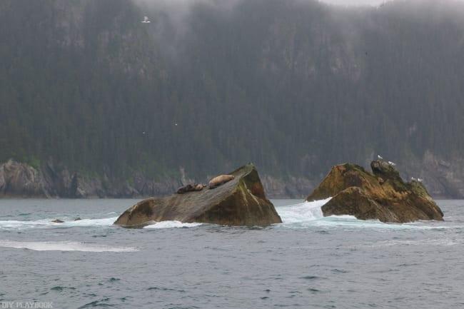 Alaska_travel-37