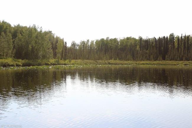Alaska_travel-73