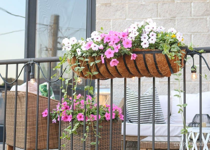 planter-boxes-hanging-flowers