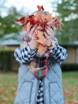 Fall Video 2016