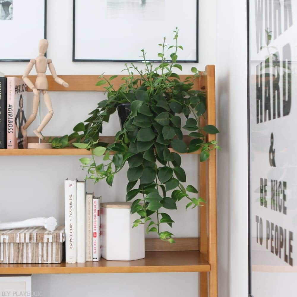 office_progress_wayfair_furniture-plant-office