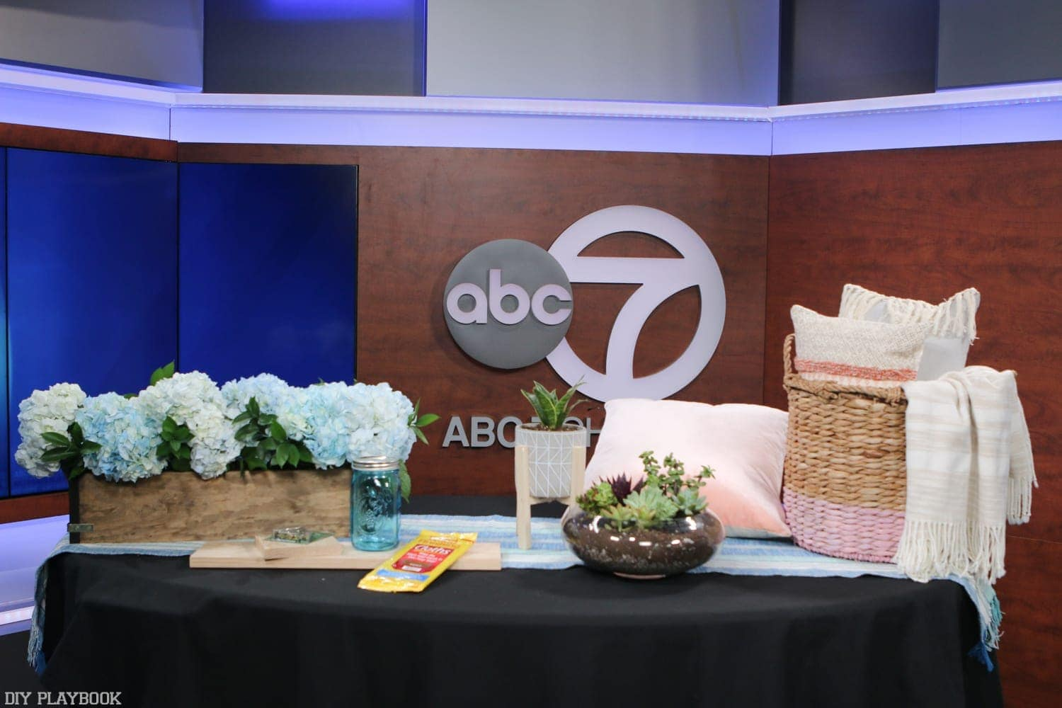 DIY Playbook was featured on ABC & News and we couldn't be more thankful for your love and support!