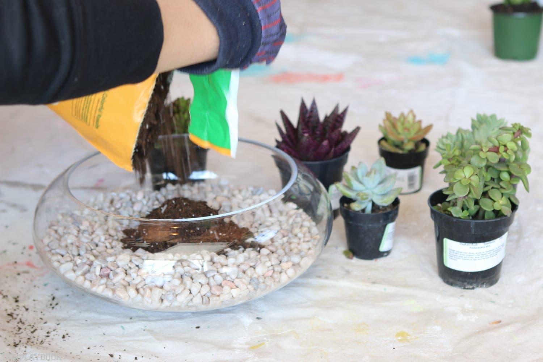 DIY_Terrarium-5