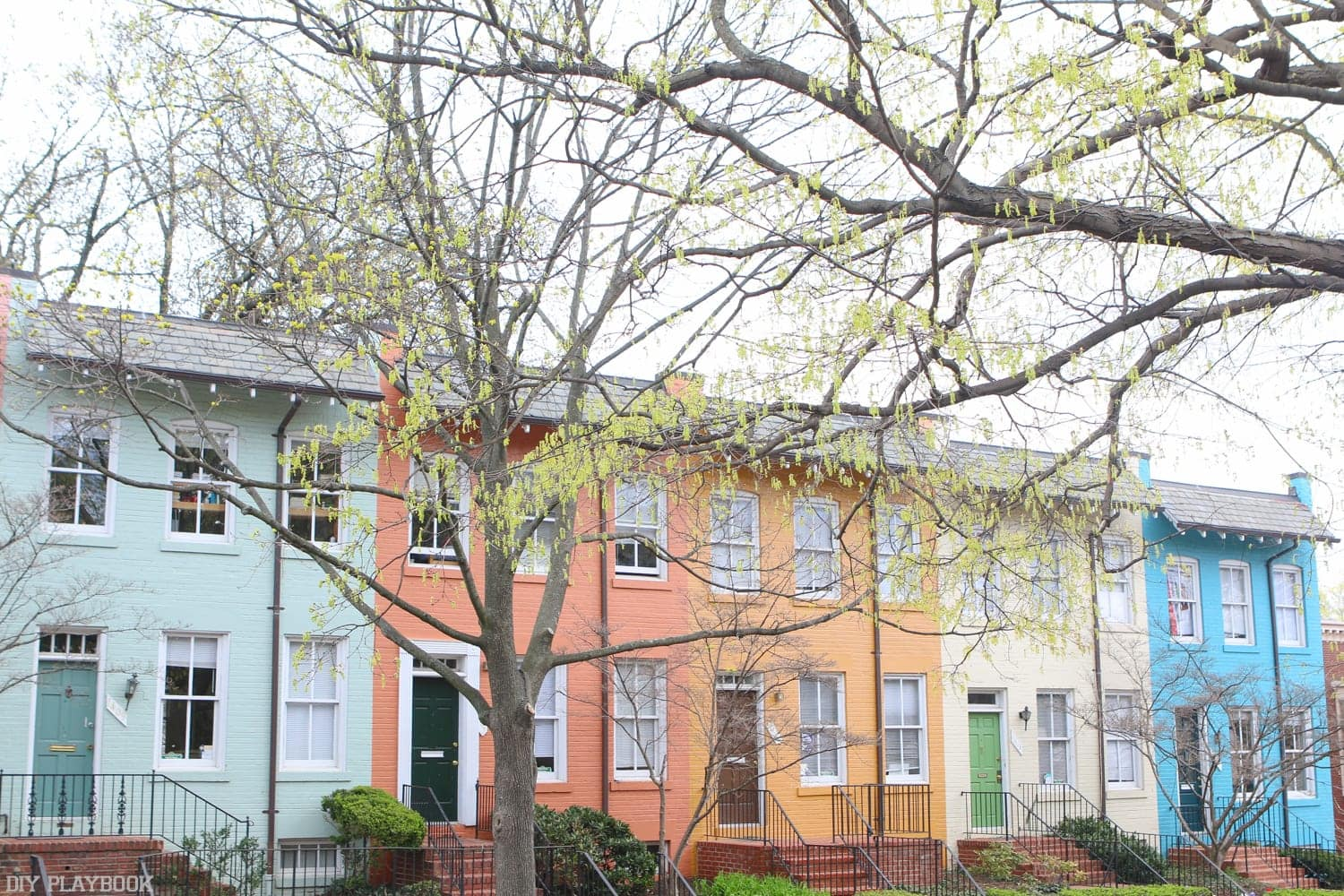 Brightly colored row-houses in Georgetown.