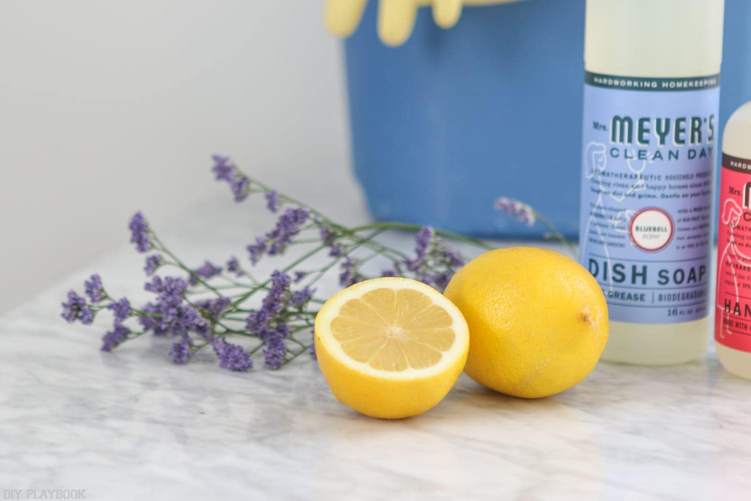 Cleaning essentials; lemon and lavender for that fresh, clean scent and dish soap and hand soap.