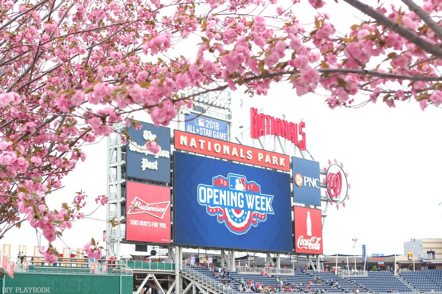 Cherry blossoms at a Nationals baseball game in Washington, DC.
