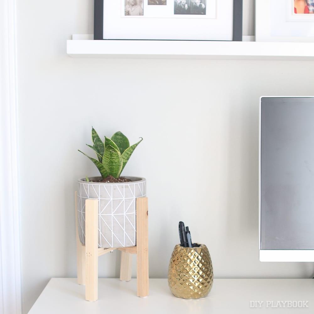 100 Good Desk Plants The Best Places To Buy Plants