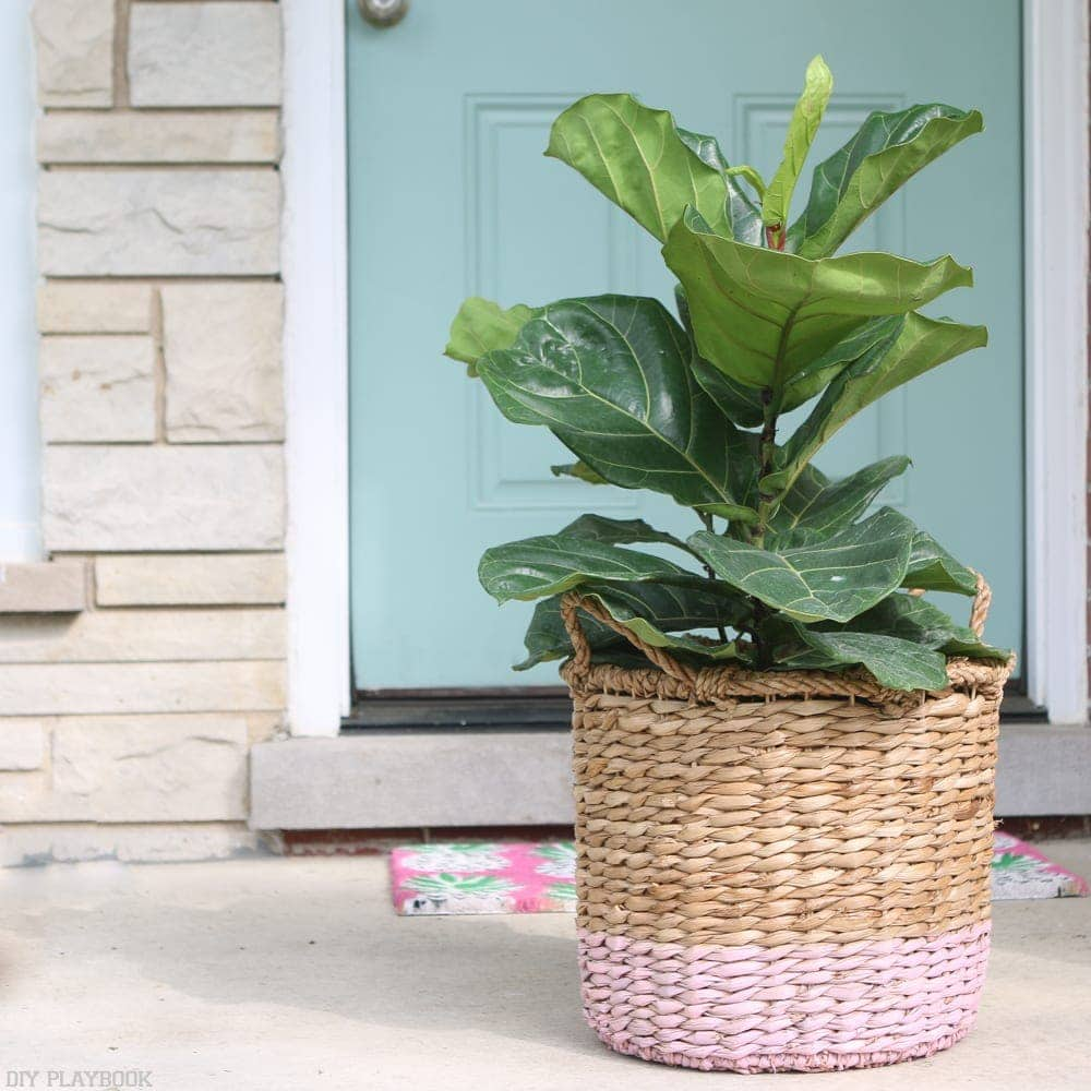 fiddle-leaf-porch-basket