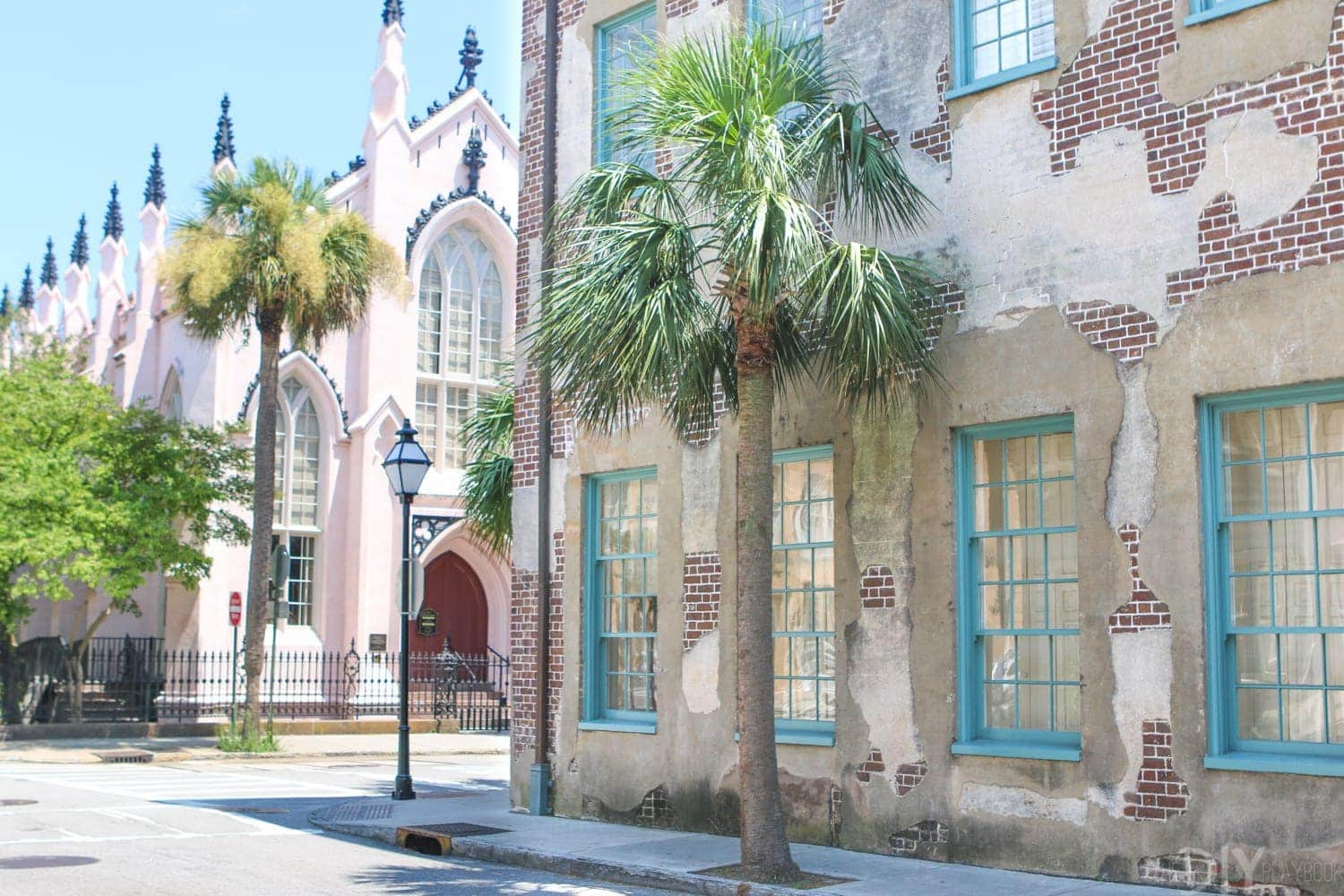 Charleston_SC_Palm_Tree_Pink_Church