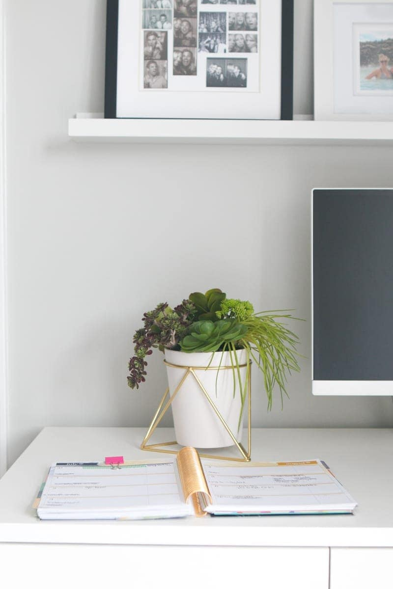 Insert: Succulent Pens DIY Office Decor Project | DIY Playbook