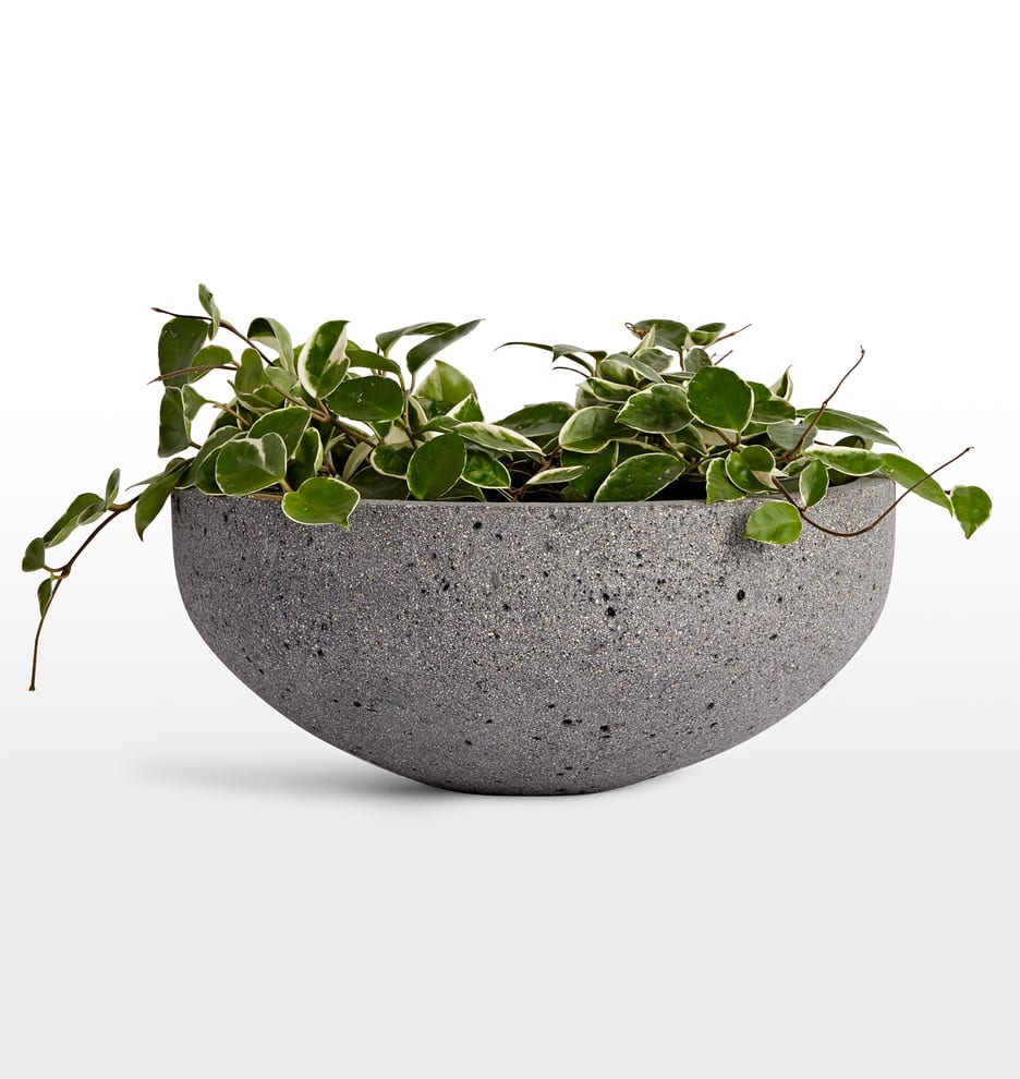 gray-bowl-planter