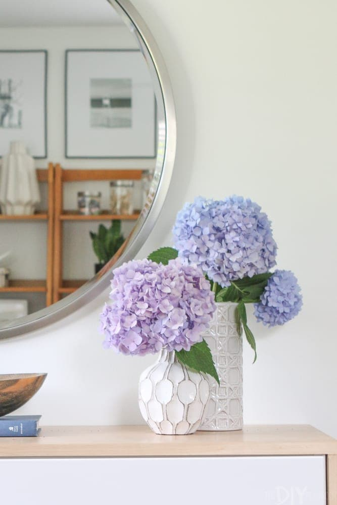 how-to-revive-droopy-hydrangeas-8