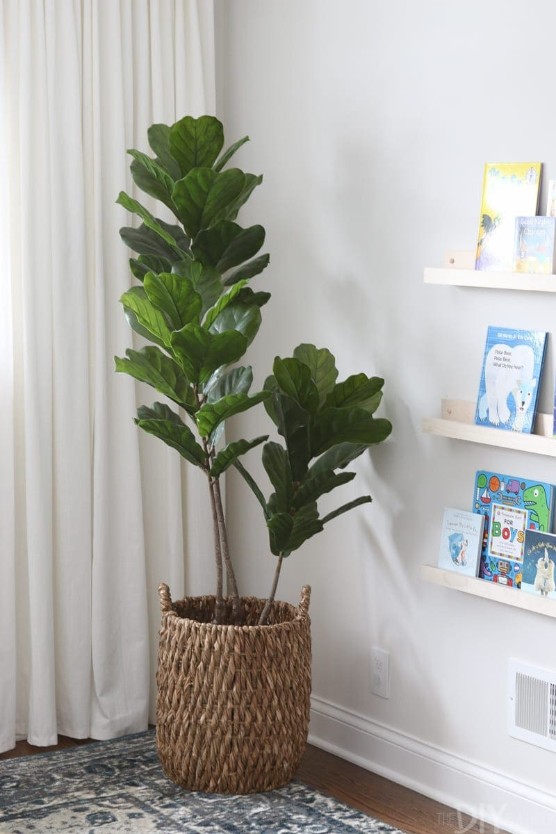 Add greenery to the nursery.