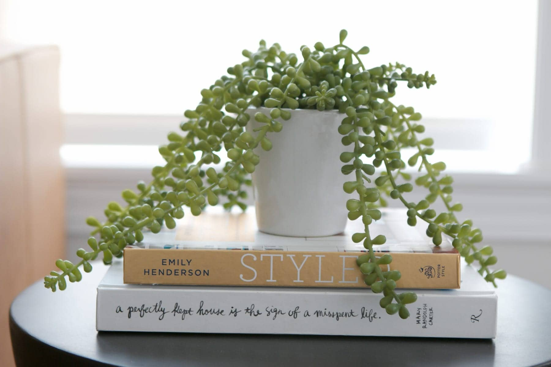 A faux plant and books on top of a black side table.