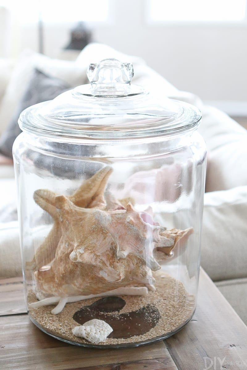 Use a clear glass canister to showcase seashells from your latest vacation