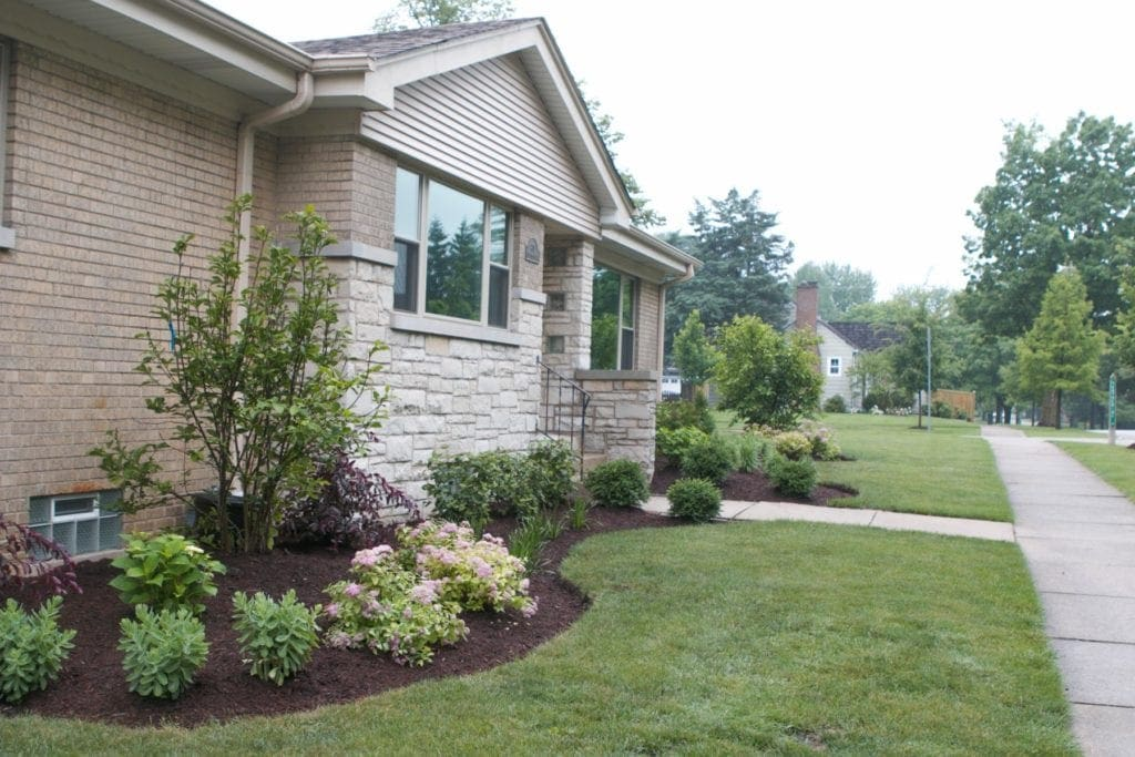new landscaping with bushes and plants