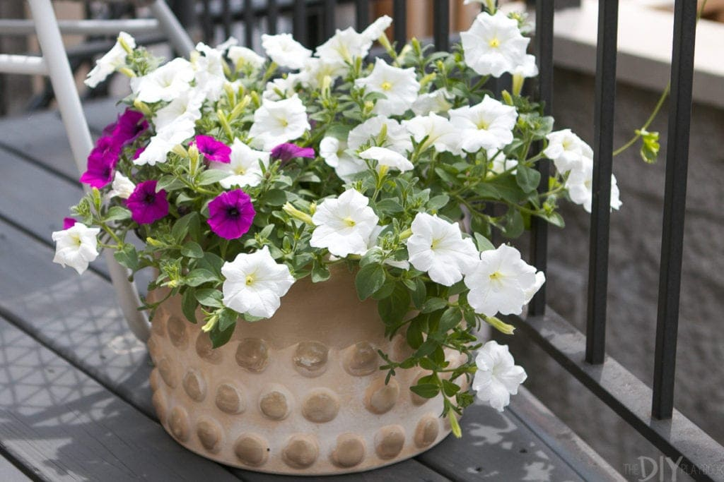 Add small planters to your deck with wave petunias