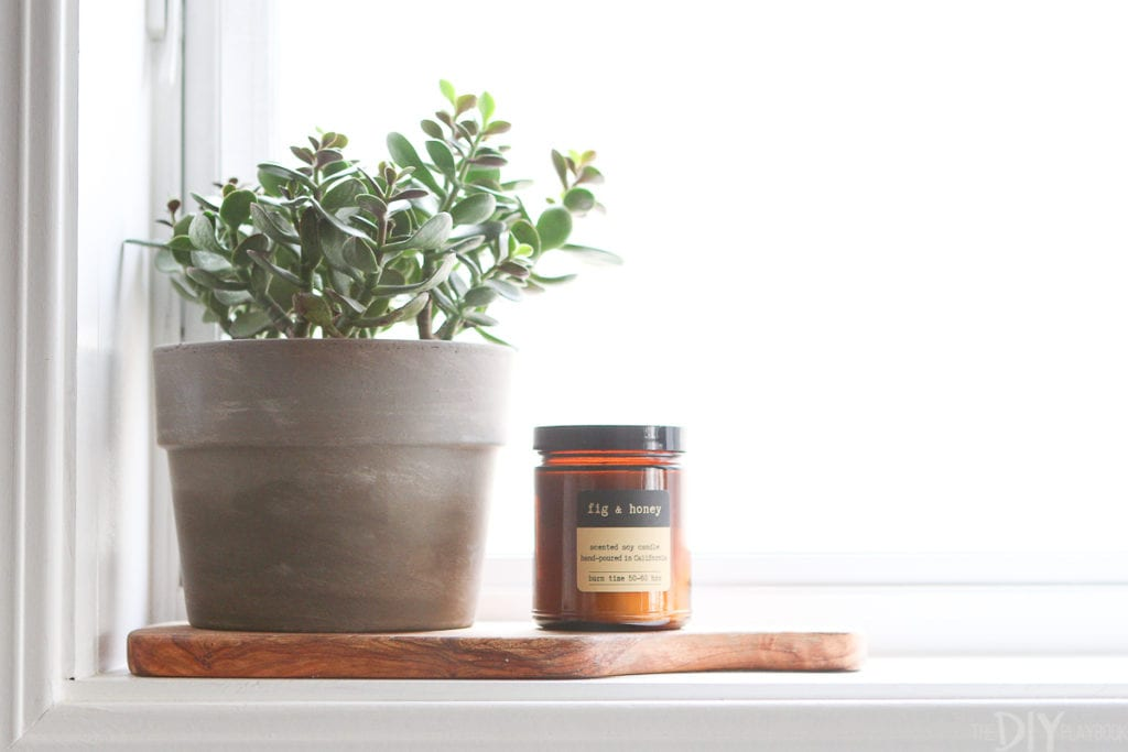 Display a plant on a windowsill in the kitchen