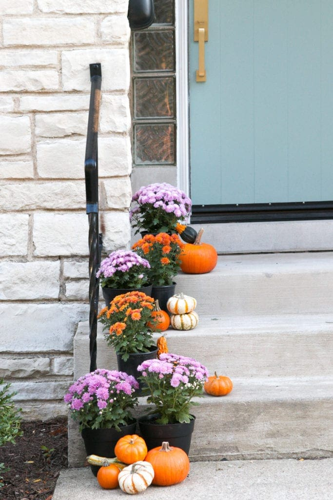 fall porch filled with colorful mums