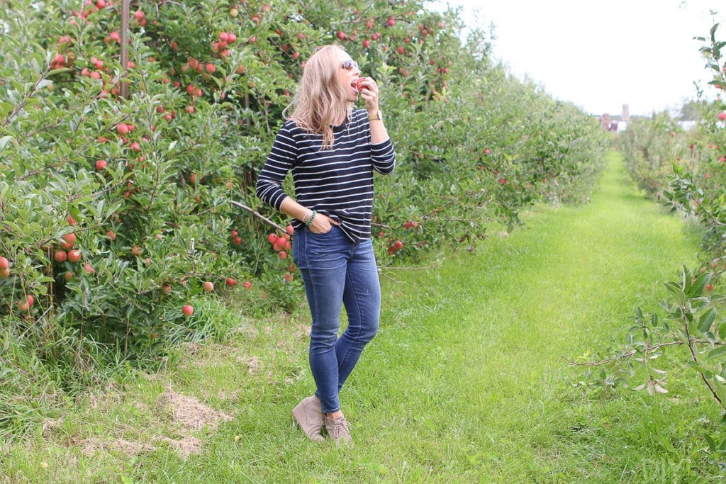 eating an apple in the apple orchard