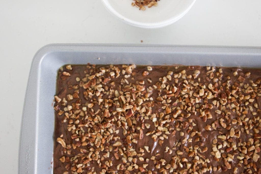 Chocolate Pecan Toffee Recipe with dusted pecans