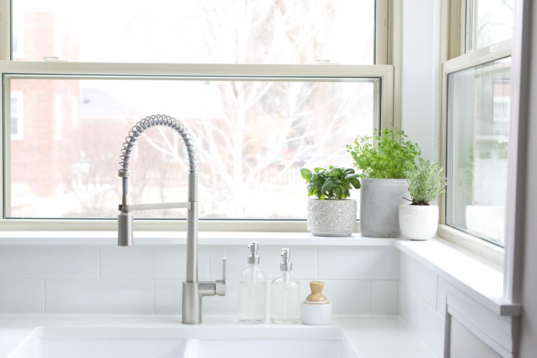 kitchen sink planters