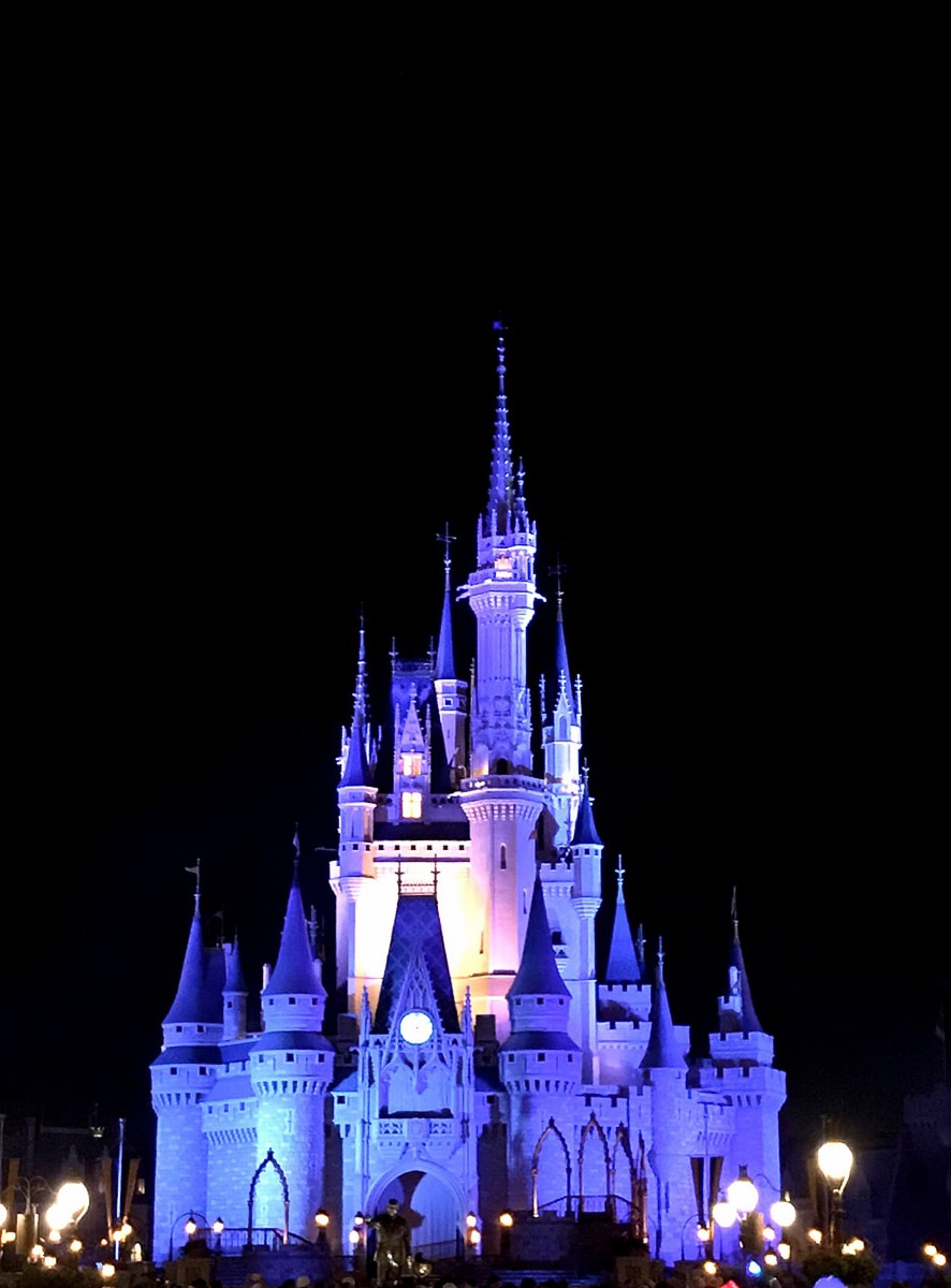 Disney's Magic Kingdom Tips for a Great Trip